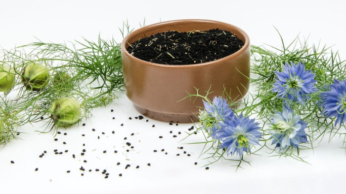 62044671 - black cumin in bowl on white background