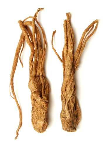 Dried Dong Quai root